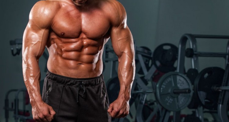 Muscle and Fitness Fiction