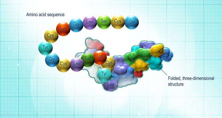Peptides And Its Benefits